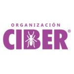 organizacion-ciber